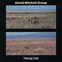 Young Cats CD